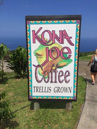 Kealakekua, هاواي: Beautiful grounds!