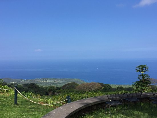 Kealakekua, هاواي: Fantastic view!