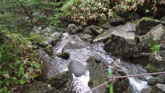 Hallasan National Park: A stream.