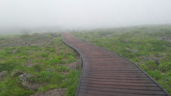 Hallasan National Park: Very foggy and windy.