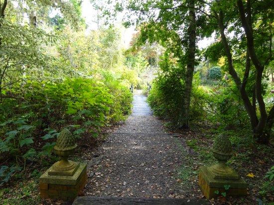 Sutton Forest, Australia: Informal area