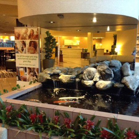 Holiday Inn Torrance: Gentle and Soothe Waterfall Sound into a Koi Fish Pond