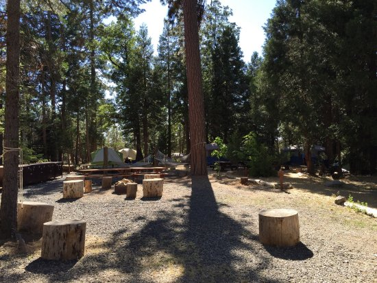 Evergreen Lodge at Yosemite: I had such s lovely stay at Evergreen Lodge. It's so peaceful and relaxing there. I highly recom