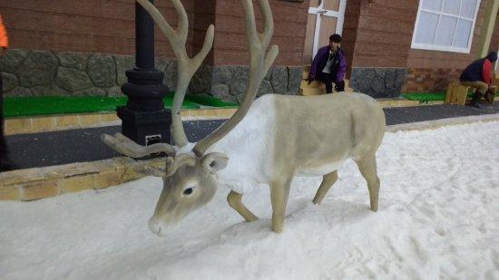 Imagica Snow Park