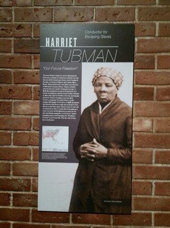 Hampton History Museum: 20160709_133855_large.jpg