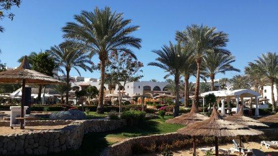 Royal Grand Sharm Hotel: 20160219_143812_large.jpg