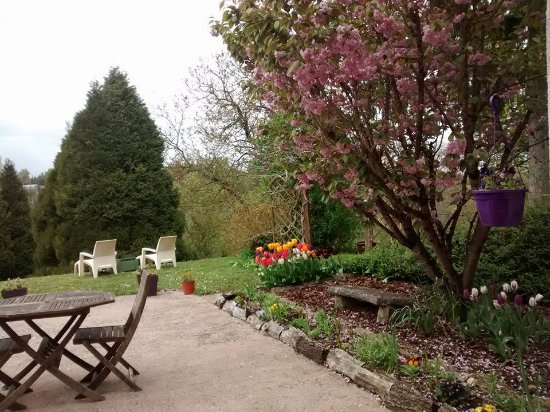 Monthou-sur-Cher, Frankrig: The front yard patio and the flower garden