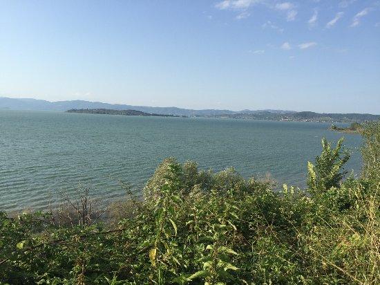Torricella di Magione, Italia: Veduta del lago Trasimeno
