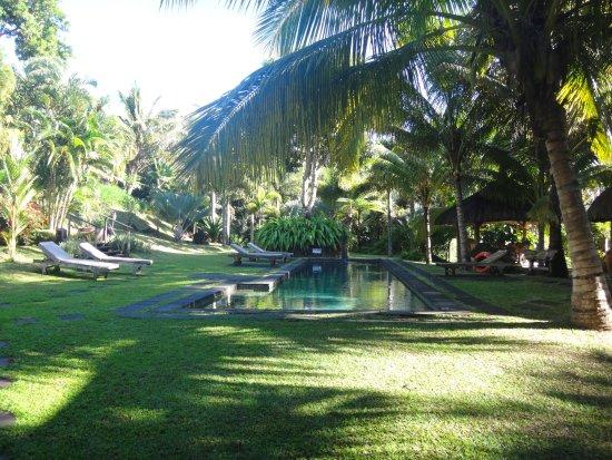 pool im garten - picture of lakaz chamarel exclusive lodge, Garten und erstellen