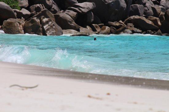 Anse Georgette: Tides