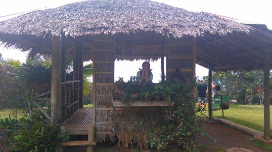 Davao City, Filippinerna: Lovely house