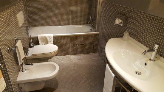 Mercure Bergamo Palazzo Dolci: Una toalla de baño SOLO.