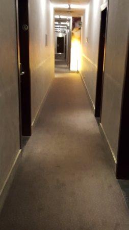 Mercure Bergamo Palazzo Dolci: Limpio. Aspecto cuidado.