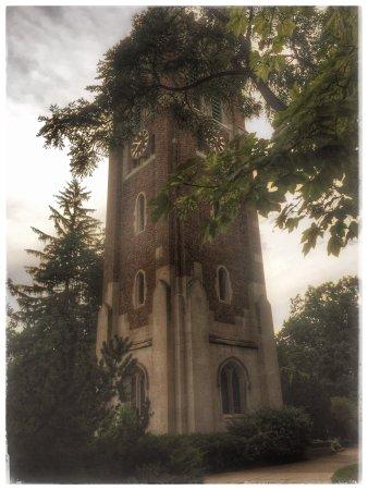 Michigan State University: photo2.jpg
