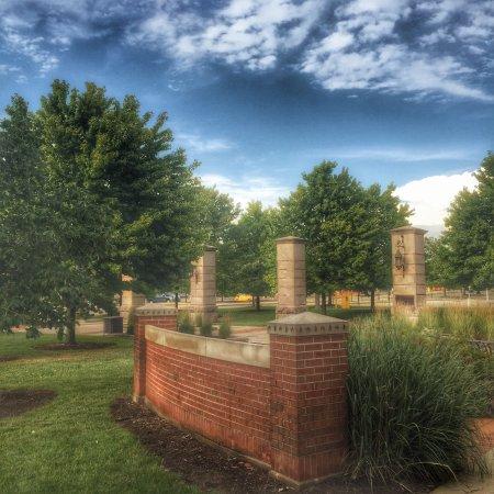 Michigan State University: photo5.jpg