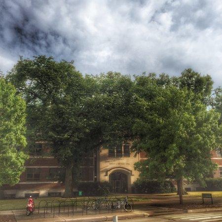 Michigan State University: photo6.jpg