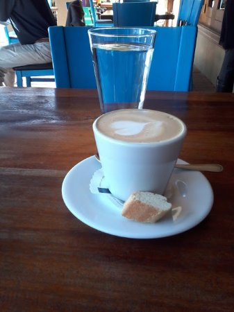 Cafenio - cappuccino under the trees