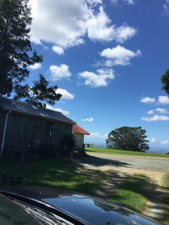Mount Tamborine ภาพถ่าย