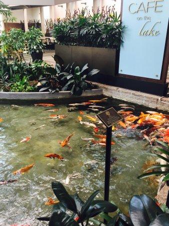 Omni Houston Hotel Photo