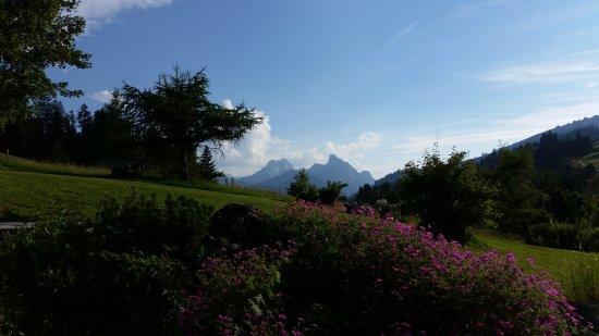Romantik Hotel Hornberg: Aussicht von der Terrasse beim Nachtessen