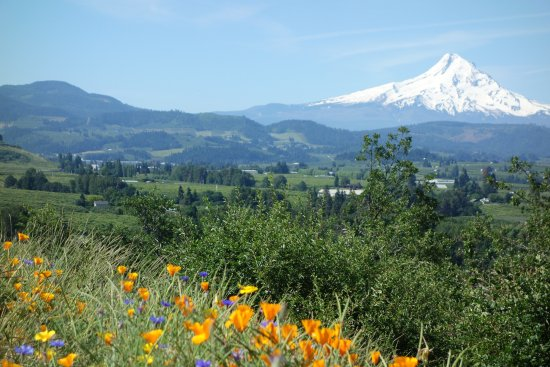Hood River, OR: Mount Hood from Panorama Point