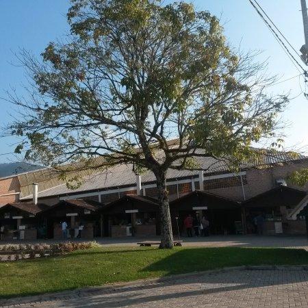 Hoteles en Timbo