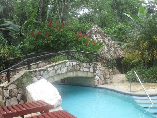 ian andersons caves branch jungle lodge pool was cool in design and freshness never