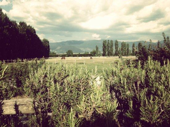 伊爾巴奧里萊絲自然酒店照片