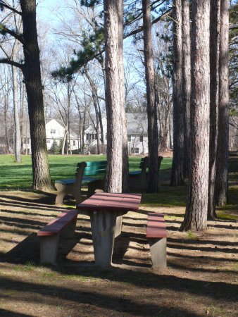 South Hadley, Μασαχουσέτη: Lots of Picnic Space