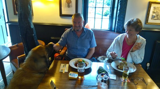 Lunch at Yew Tree Inn, Odstock