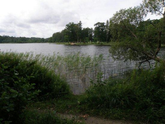 Otepaa, Estonia: Lake Puhajarv