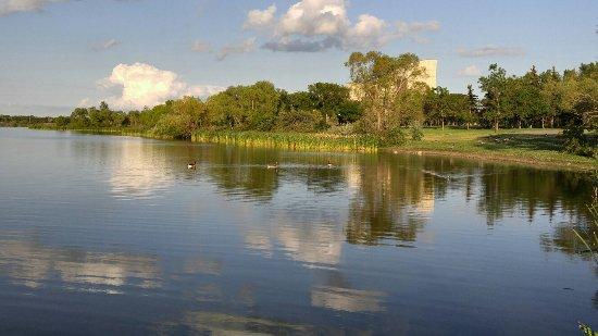 Wascana Centre Park : 20160707_213813_large.jpg