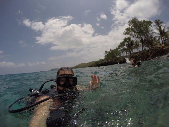 Paradise Dive Shop: El Velerito & Nirvana