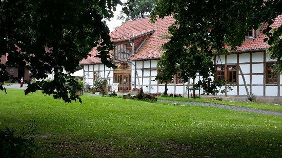 Barsinghausen, ألمانيا: Cafe im Schafstall