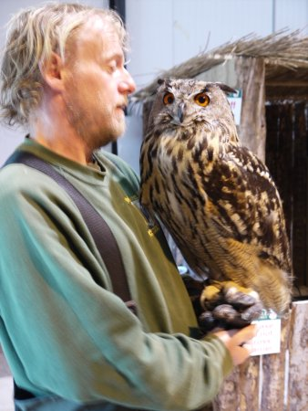 Kilmacthomas, ไอร์แลนด์: The owner, Willie, and Isabelle the owl