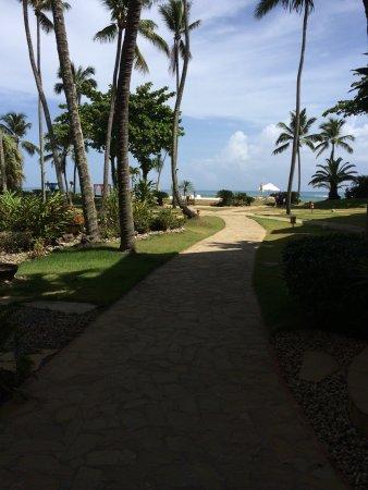Velero Beach Resort: photo1.jpg