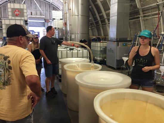 Makawao, HI: Distillery tour