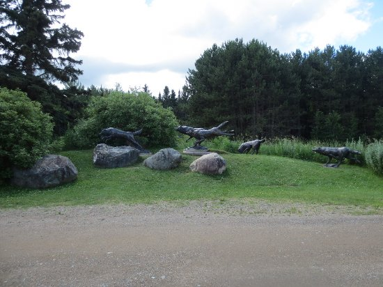 Ely, MN: Wolf Center statues