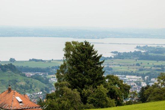 Heiden, Schweiz: Bodenseeblick