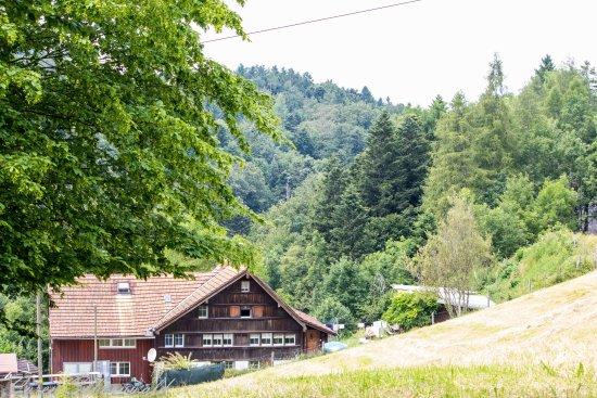 Heiden, Schweiz: Schweizer Hof