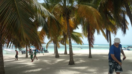 Bayahibe, Dominican Republic: Coming off the boats