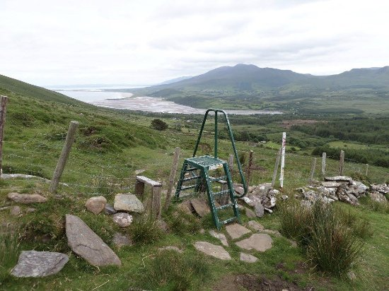 Mount Brandon: ladder over farmer's sheep fence - there were a few of these
