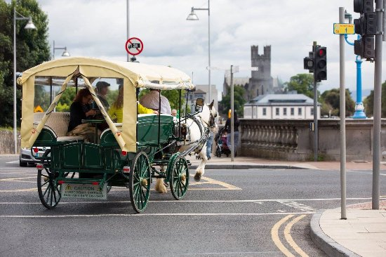 ‪Limerick Carriage Tours‬