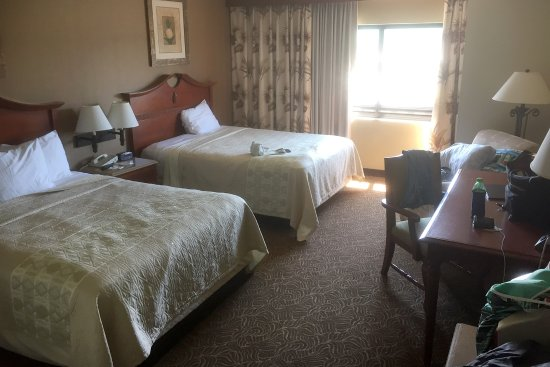 Welch, MN: Treasure Island - Lagoon - Two Queen Room