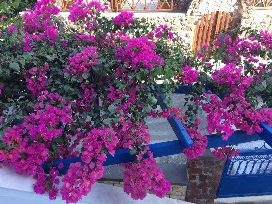 Karterádhos, Griekenland: photo2.jpg