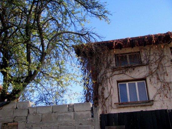 Rakitovo Photo