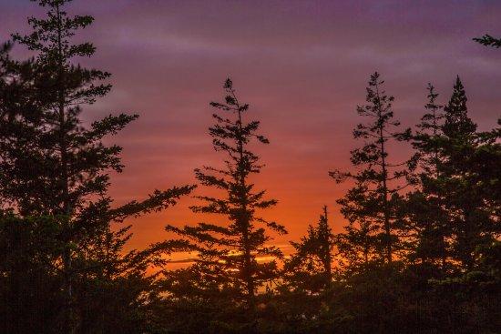 Florence, OR: sunset at Honeyman