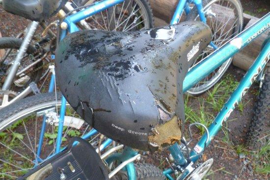 Prospect, OR: great bike rentals