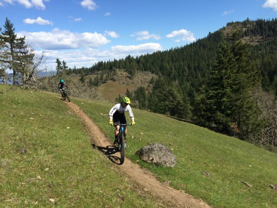 Enjoy some amazing singletrack in Hood RIver on one of our bikes
