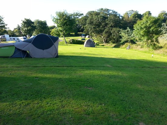 Saint Ewe, UK: Pitches 7, 8 (tent nearest) to 11